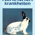 Buch: Kaninchenkrankheiten